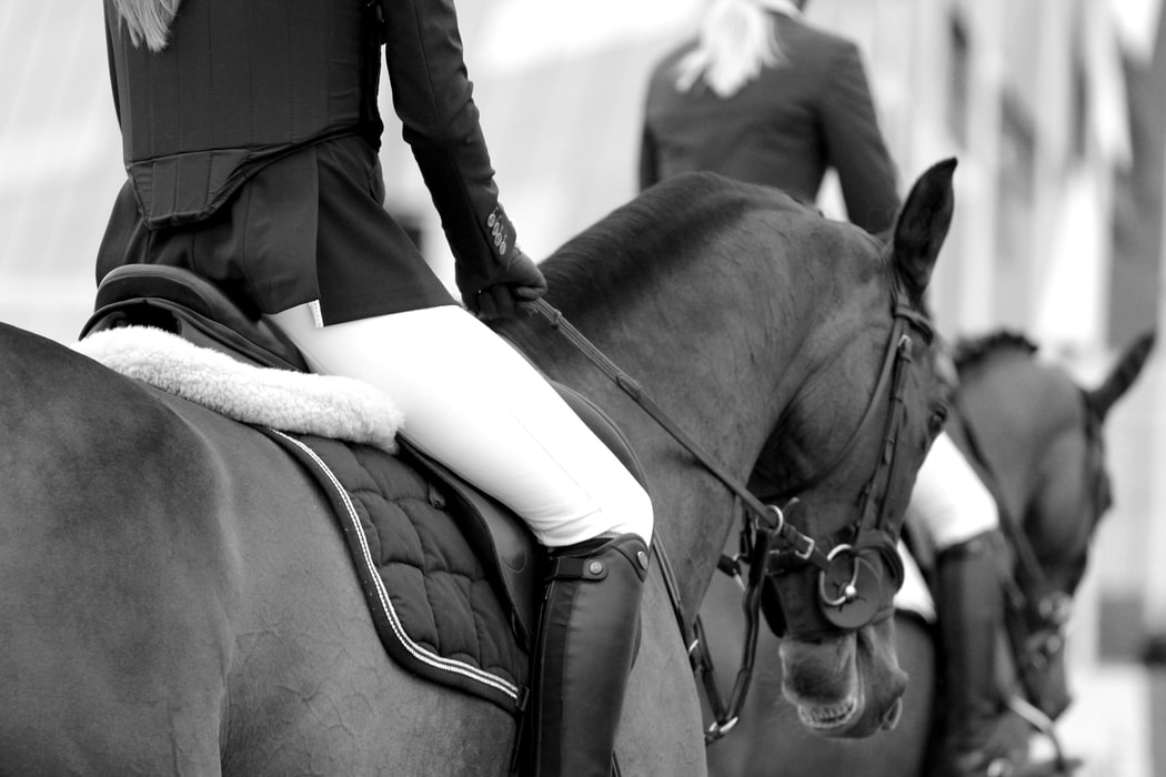 Choosing a horse riding discipline